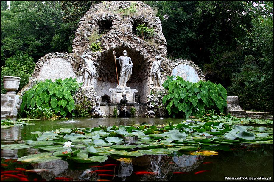 Chorwacja Arboretum