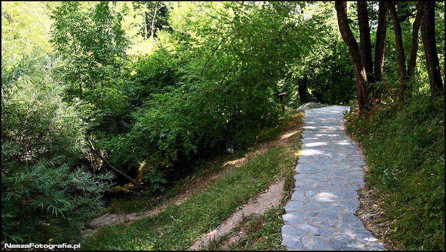 vevcani-IMG_0323