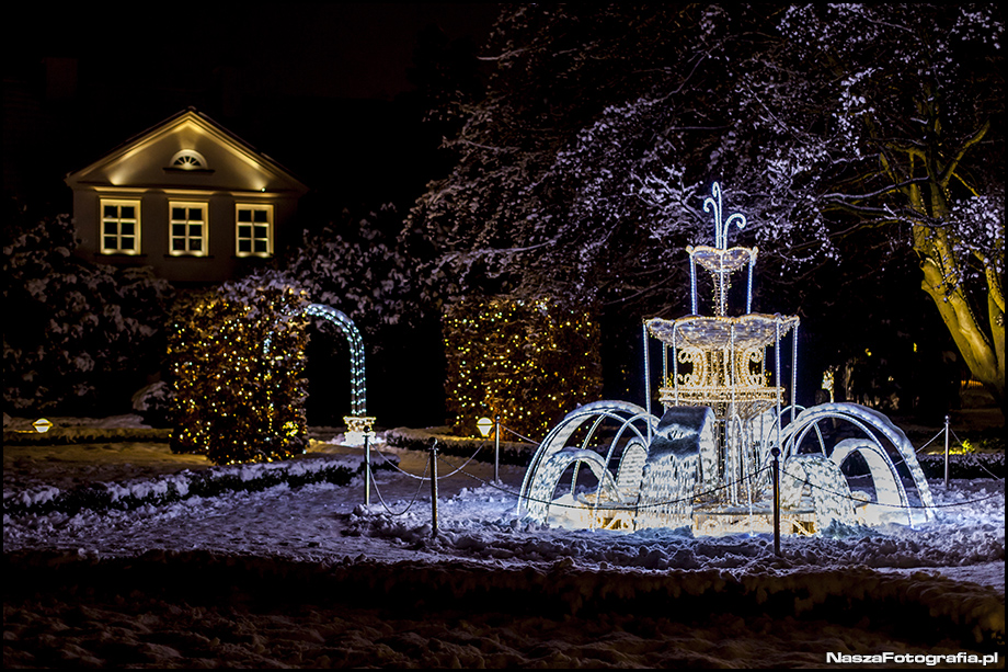 Świąteczne iluminacje w Parku Oliwskim